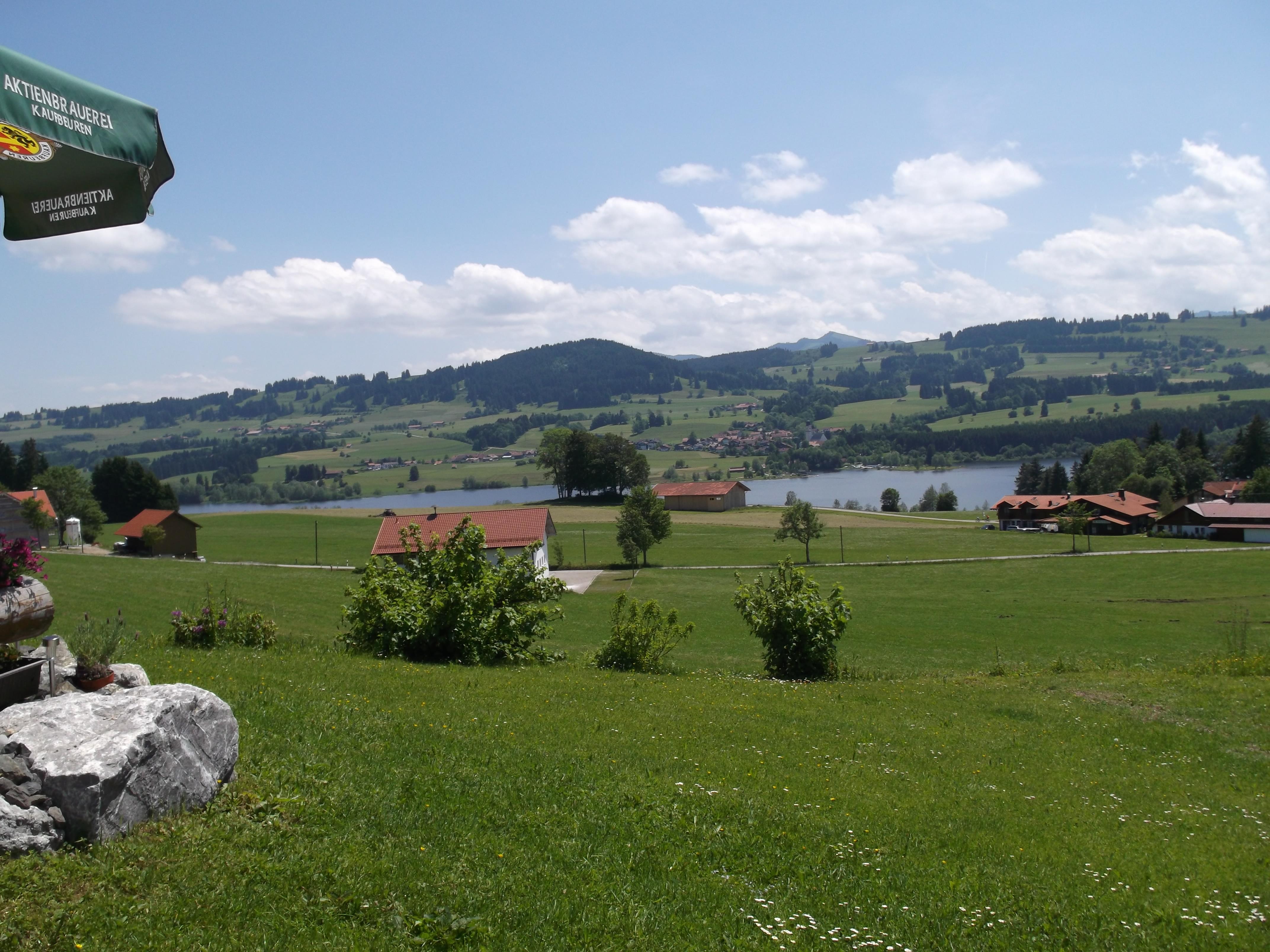 Moosbach mit Ausblick auf See